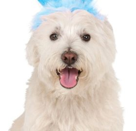 Rubies Costume Company 580336_S-M Crinkle Blue Bunny Ears Pet Headband, Small-Medium