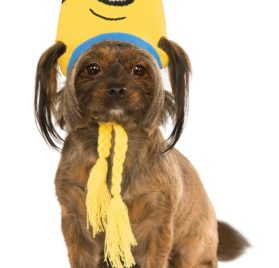 Rubies Costume Company 580372_S-M Minion Stuart Knit Dog Headpiece, Small-Medium