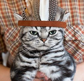 Stylish Indian Feather Pet Headband Eagle Hat for Cat and Dog 3