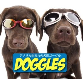 Doggles ILS X-Small Racing Flames Frame and Orange Lens 2