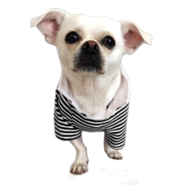Alfie Pet by Petoga Couture - Jesse Striped Polo Shirt