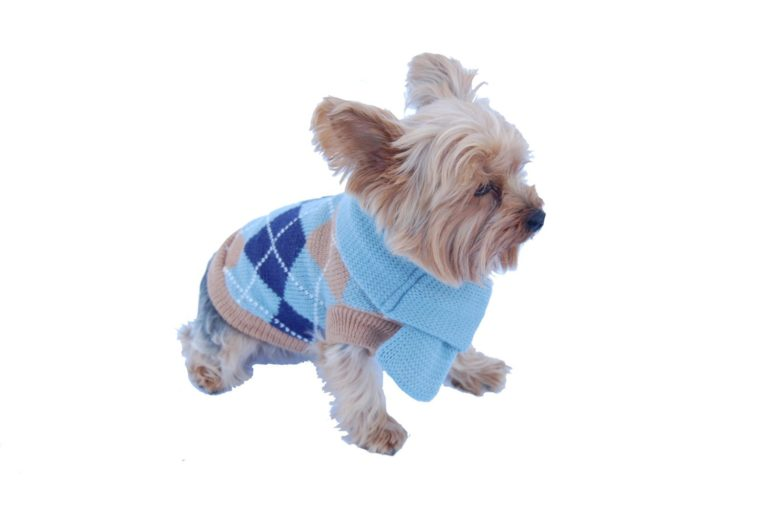 Anima Knit Argyle Sweater with Matching 14-Inch Scarf - Blue-Purple (Large, Medium, Small, Extra Small)