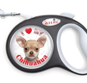 Chihuahua Brown Retractable Dog Leash