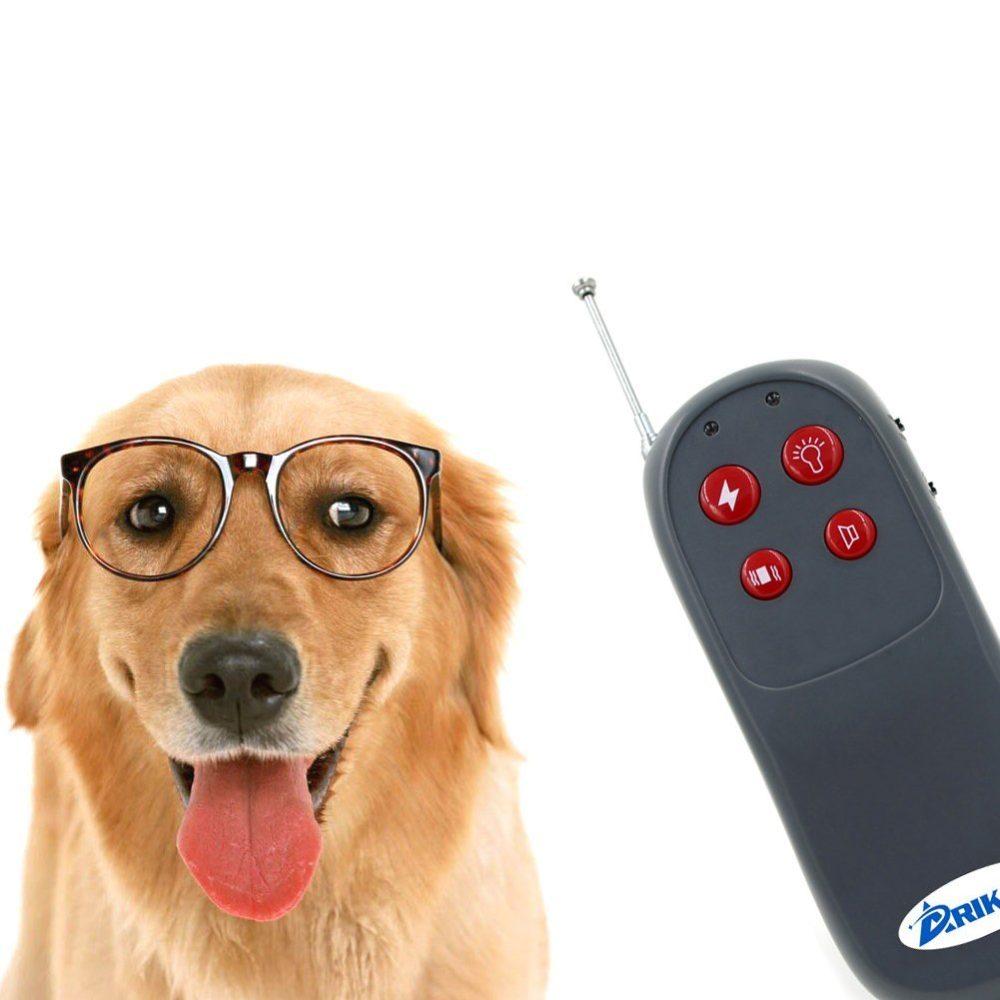 Medium Dog Shock Collar With Remote