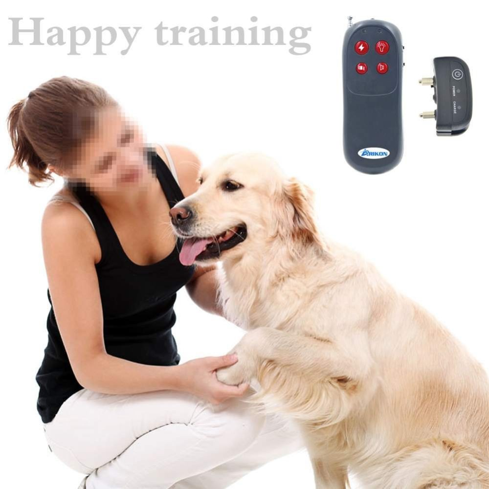 Shock Collar For Training Large Dogs