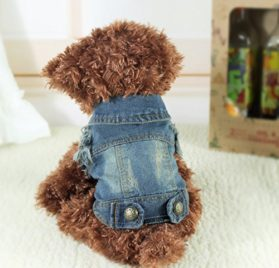 EverTrust(TM) New Fashion Pet Puppy Cat Denim Vest Personalized Dog Clothes Summer False two Dog Clothing for Chihuahua