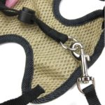 Alfie Pet by Petoga Couture - Hennie Step-in Harness and Leash Set 6