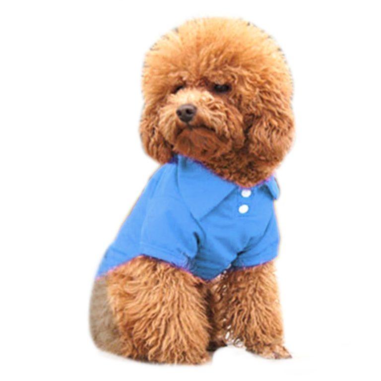 Alfie Pet by Petoga Couture - Hollis Solid Color Polo Shirt