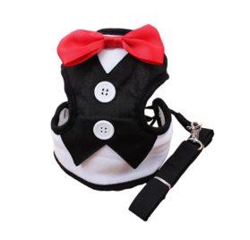 KYZ Male Female Dog Bow Vest Harness Dog Collar Leash Set
