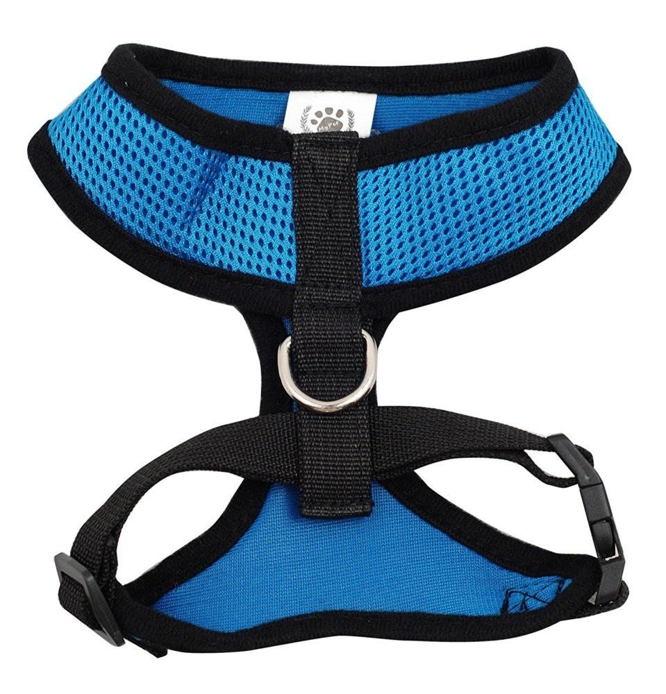 how to fit easy walk harness