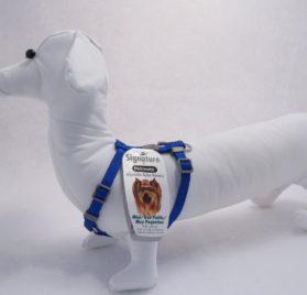 Petmate Adjustable Mini Dog Harness, Royal Blue