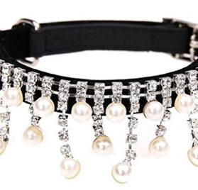 BINGPET Adjustable Trendy No Stink Sparkly Dog Collar With Pearl