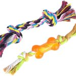 BINGPET Dog Dental Chew Toy Set Interactive Bone and Rope for Puppy Small Dogs