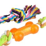 BINGPET Dog Dental Chew Toy Set Interactive Bone and Rope for Puppy Small Dogs 3