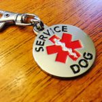 DOUBLE SIDED SERVICE DOG with Red Medical Alert Symbol 1.25 inch Durable Stainless Steel Dog Tag 2