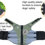 Vivaglory New Sports Style Ripstop Dog Life Jacket with Superior Buoyancy & Rescue Handle, 5 Sizes & 7 Colors 3
