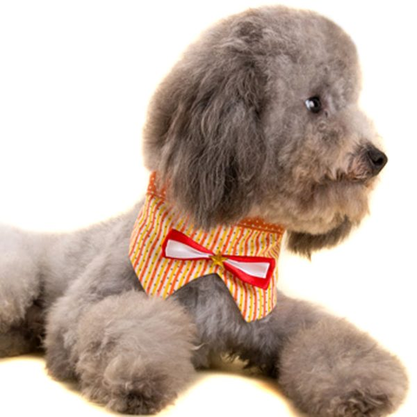 Alfie Pet by Petoga Couture - Morgan Bandana for Dogs and Cats