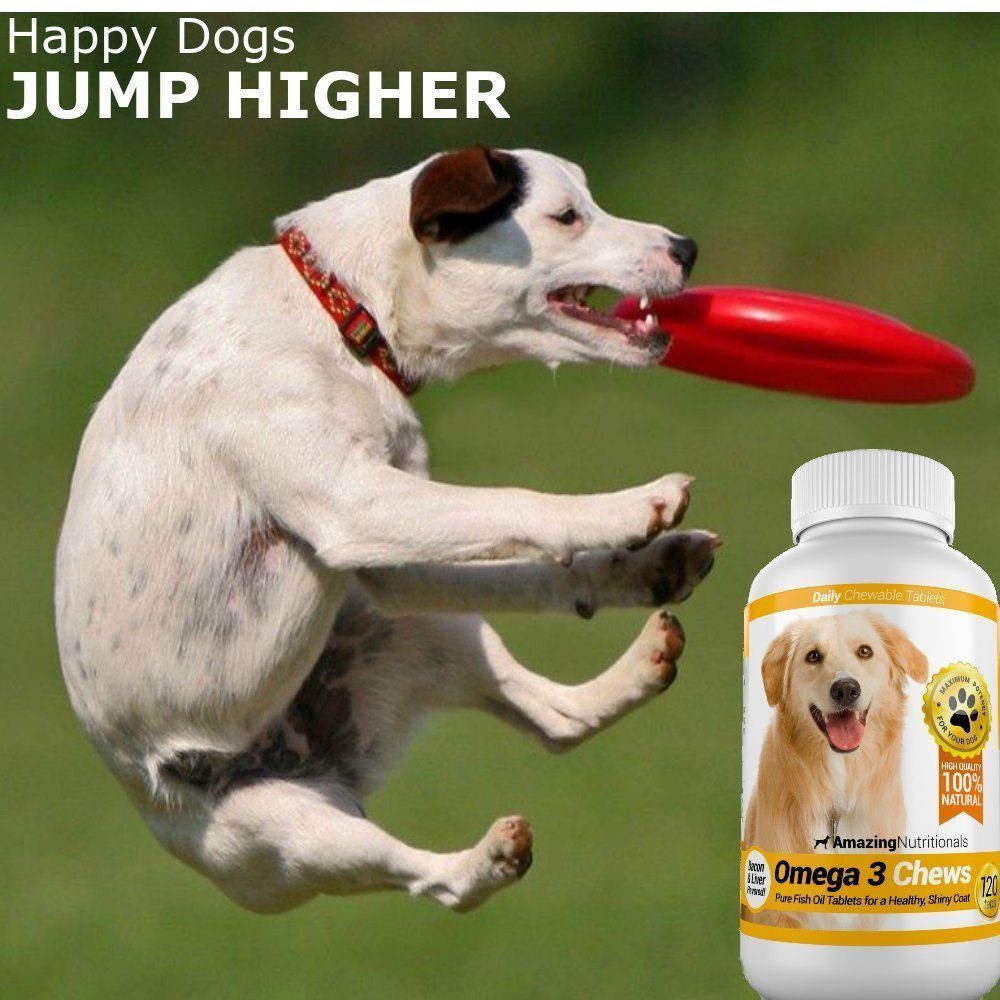 Amazing combo omega 3 fish oil and turmeric curcumin for dogs for Fish for dogs