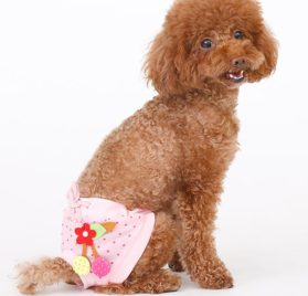MaruPet Cotton Tighten Dot Printed Custome Sanitary Physiological Pants Toy Detachable Pet Underwear Diapers with Bowknit for Girl Teddy, Pug, Chihuahua, Shih Tzu, Yorkshire Terriers, Papillon