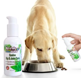 Naturally PAWesome Canine Hip & Joint Care Flavored Liquid Supplement, Spray Bottle 2