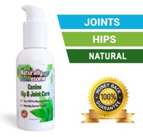 Naturally PAWesome Canine Hip & Joint Care Flavored Liquid Supplement, Spray Bottle