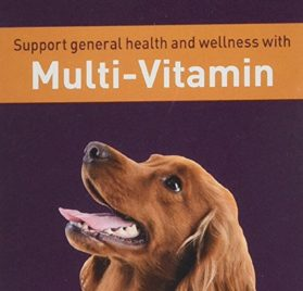 Pettura - Multi-Vitamin, Liquid Dog Supplements, Supports General Health & Wellness, 4 Ounces