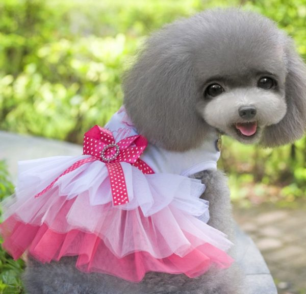 MaruPet Dog Daisy Gauze Tutu Dress Skirt Pet Dog Cat Princess Clothes Bowknot Dress