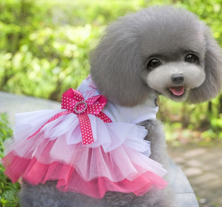 MaruPet Dog Daisy Gauze Tutu Dress Skirt Pet Dog Cat Princess Clothes Bowknot Dress