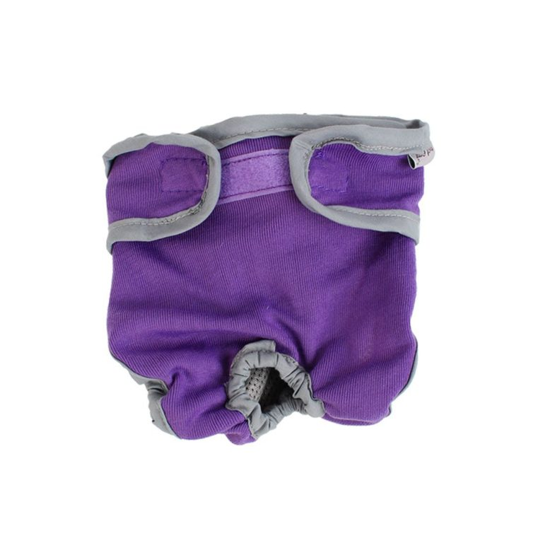 Pet Dog Waist Diaper Physiological Pants Underwear Size S Purple Gray