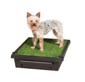 PetSafe Pet Loo Portable Pet Potty
