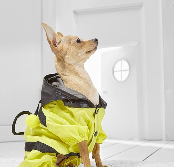 Toy Dog Bumble Bee Raincoat With Hood For Yorkie Pomeranian Chihuahua Papillon