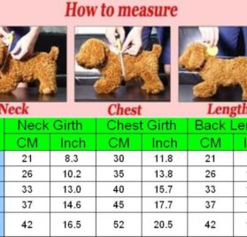 Idepet Dog Cat Pet Shirts Soft Striped Cotton Vest for Small Dog Teddy Poodle Chihuahua Pug Puppy 2