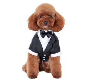 Outtop Gentlemen Butler Housekeeper Costumes Bow Tie Tuxedo Party Suit for Small-sized Pets Dogs Teddy Poodle Pug Chihuahua