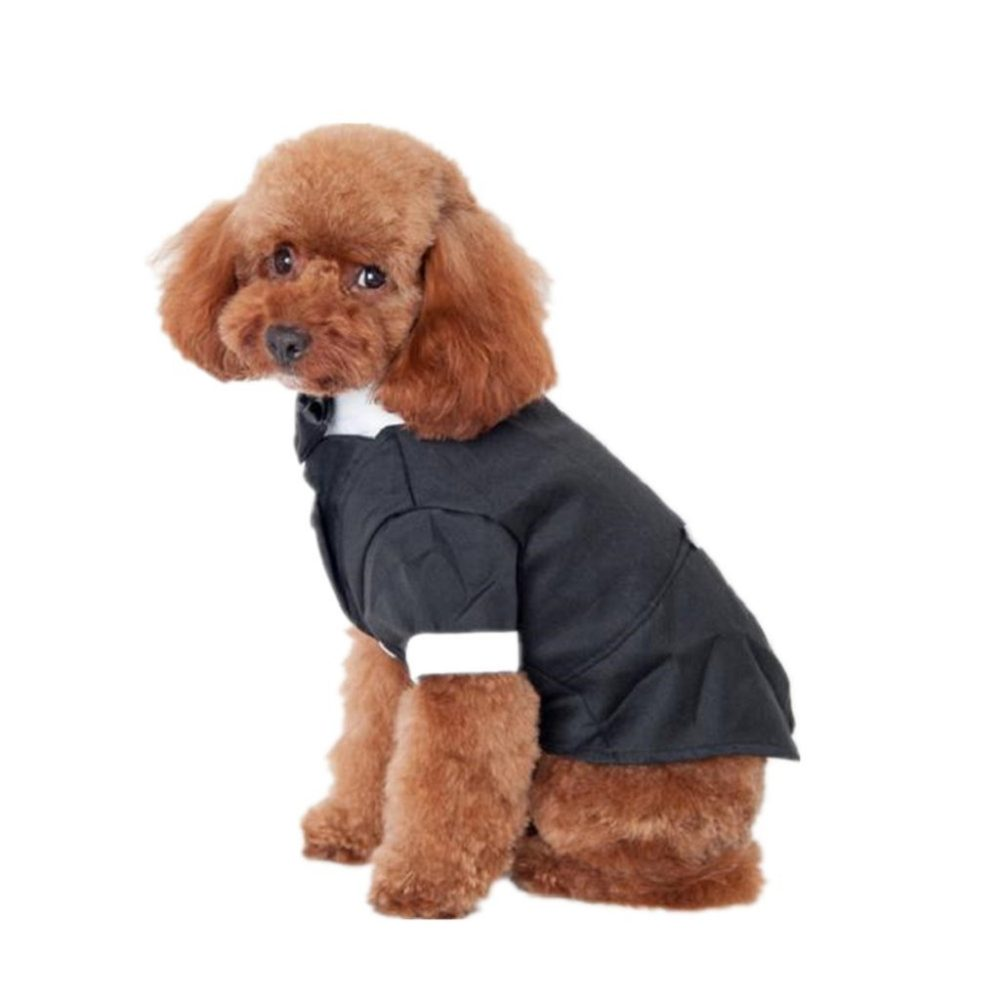 ... Outtop Gentlemen Butler Housekeeper Costumes Bow Tie Tuxedo Party Suit for Small-sized Pets Dogs  sc 1 st  Chihuahua Kingdom & Outtop Gentlemen Butler Housekeeper Costumes Bow Tie Tuxedo Party