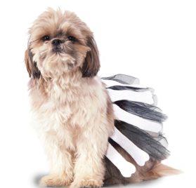 Rubie's Bone Tutu Dog Costume
