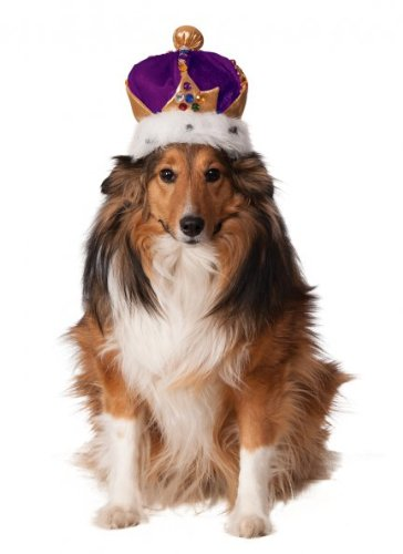 Rubies Costume Company Mardi Gras King's Crown for Pets