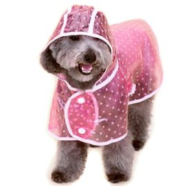 Alfie Pet by Petoga Couture - Alvin Raincoat (for Dogs and Cats) 2
