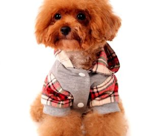 Alfie Pet by Petoga Couture - Leo Flannel Hoodie 2