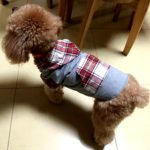 Alfie Pet by Petoga Couture - Leo Flannel Hoodie 3