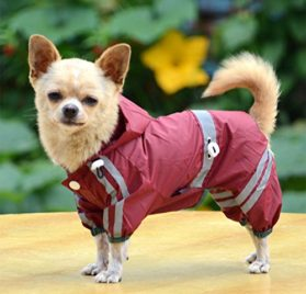 Dog Waterproof Raincoat Outdoor Hooded Rain Coat for Teddy ,Pug,Chihuahua,Shih Tzu,Yorkshire Terriers,Papillon 2