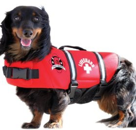 Fido Pet Products Paws Aboard Neoprene Doggy Life Jacket, X-Small, Red 2