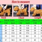 Idepet Dog Cat Hoodie Cotton Pet Coats Solid Color Clothing for Small Dogs Puppy Teddy Poodle Chihuahua 2