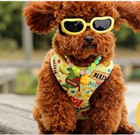 Namsan Fashion Anti-ultraviolet Sunglasses Goggles Waterproof Pet Sunglasses For Cats or Small Dogs 2