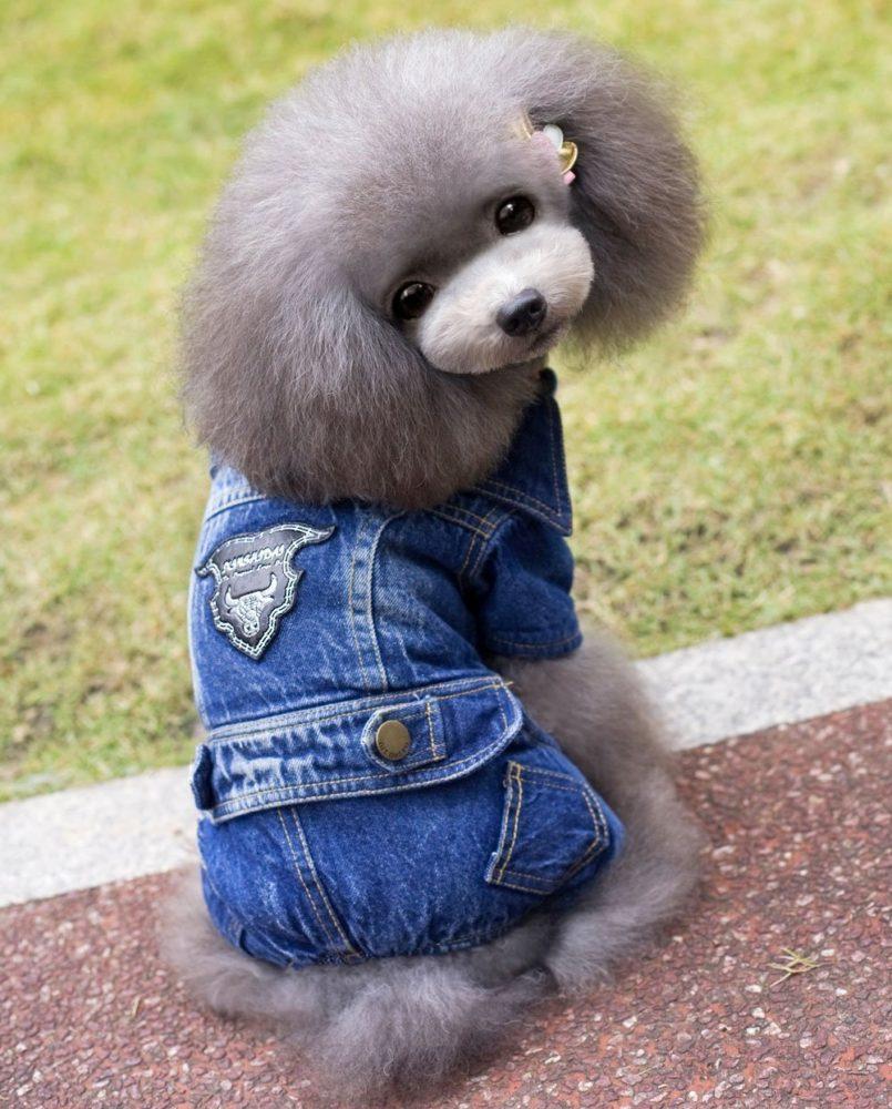 Selmai Male Dog Outfits Denim Jacket Fleece Dog Coat