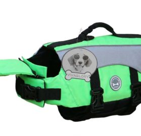 Vivaglory Dog Life Jackets with Extra Padding for Dogs, X-Small - Extra Reflective Green