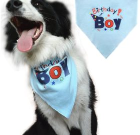 Dog Birthday Bandana Pet Scarf Blue