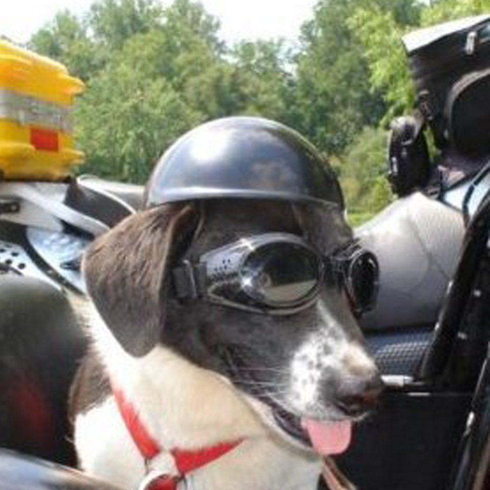 Lifeunion Funny Cool Pet Doggie Motorcycles Bike Helmet