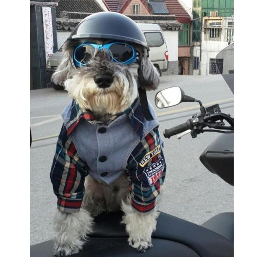 Lifeunion Funny Cool Pet Doggie Motorcycles Bike Helmet