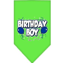 Mirage Pet Products Birthday Boy Screen Print Bandana for Pets, Small, Lime Green
