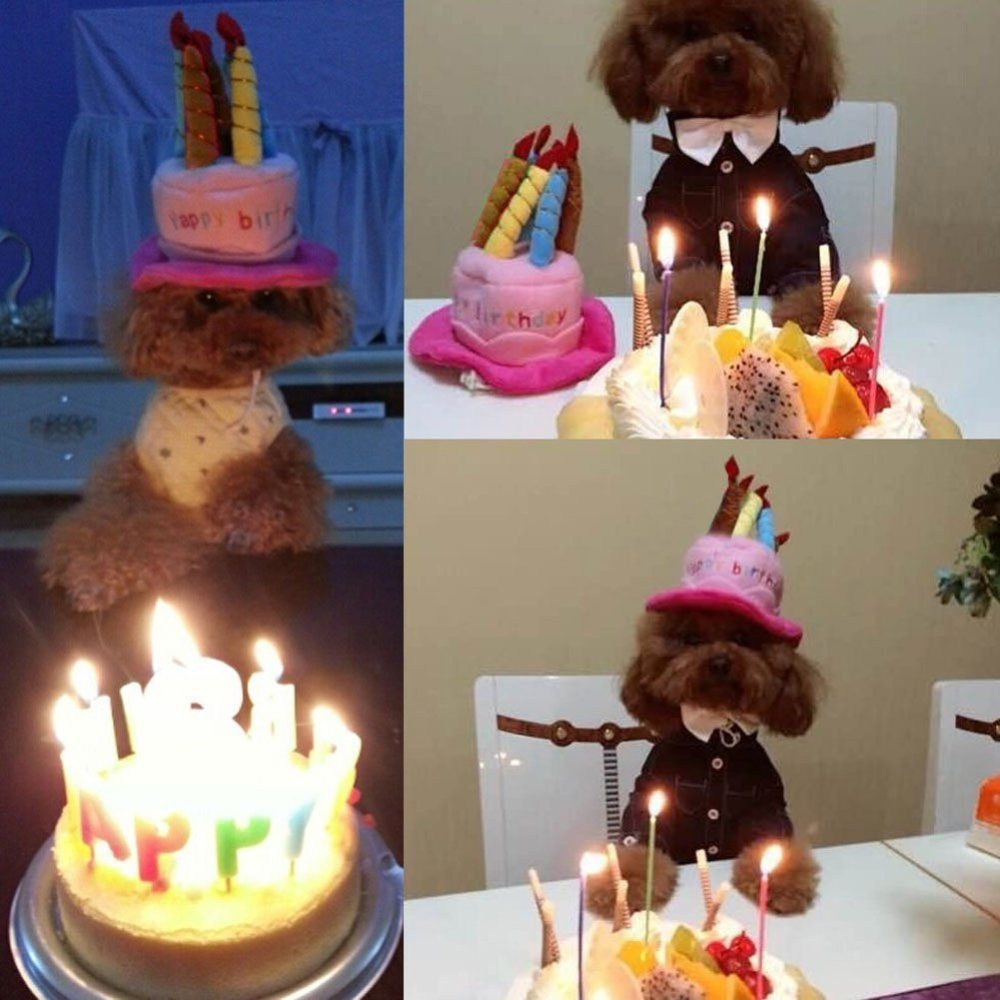 Petzilla Pet Birthday Hat For Small Cats Dogs Cake Candles Design
